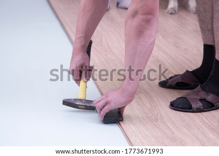 Laminate. Installing laminate at home on a plywood floor.