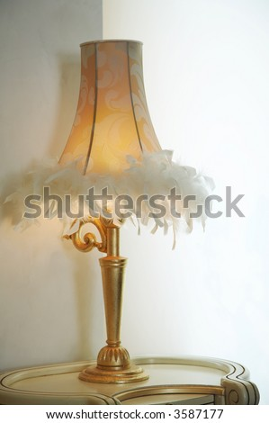 Desk Lamp Shades on Lamp Shade With Feathers Of A Desk Lamp Stock Photo 3587177