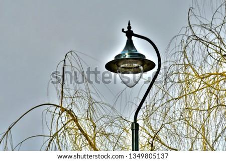Lamplight in park #1349805137
