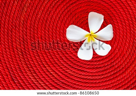 Lan thom flower on roll red rope