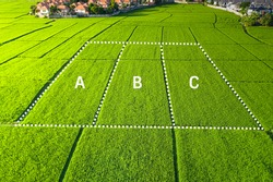 Land for sale and investment in aerial view. Include green field, agriculture farm, residential house building, village. That real estate or property. Plot of land lot for subdivision or development.