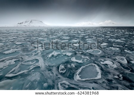 Land of ice. Winter Arctic. White snowy mountain, blue glacier Svalbard, Norway. Ice in ocean. Iceberg in North pole. Black clouds with ice floe. Beautiful landscape. Cold sea  water. #624381968