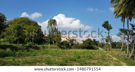 land scape photo of my cultivated land  #1480791554
