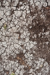 Land with dry cracked ground texture background