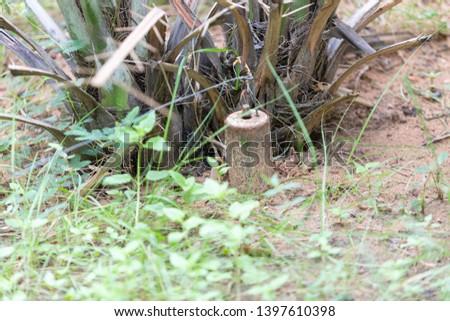 landmines planted to kill and injure civilians Stock photo ©