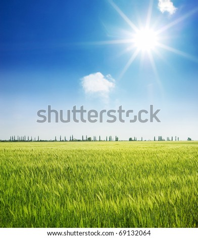 landscape - stock photo