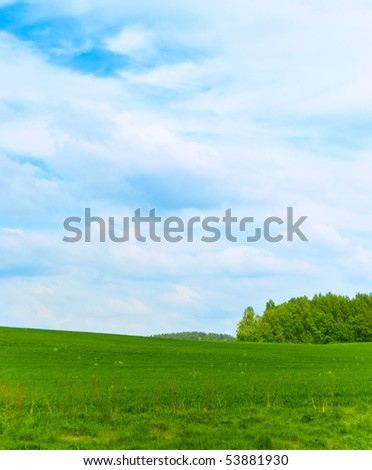 Landscape - a field and wood on horizon