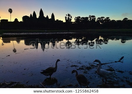 Landscape and sunrise of Angkor wat temple in Siem reap in Combodia, Travel and Landmark