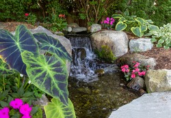 Landscape architecture with pink flowers and ornamental grasses for summer garden with waterfall