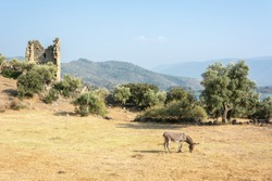 Landscape around Lake Bafa in Turkey with ruins of Herakleia.
