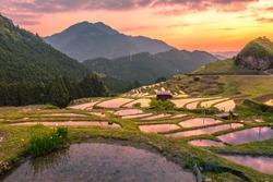 Landscape at evening, Terrace rice fields, Kumano, japan