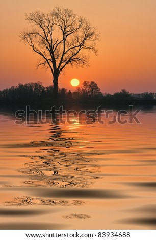 Landscape at sunrise of lake, silhouetted bare trees and reflections of colorful sky, Michigan, USA
