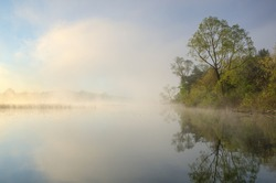 Landscape at sunrise of the foggy, spring shoreline of Whitford Lake, Fort Custer State Park, Michigan, USA