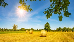 Landscape banner wide panoramic panorama background - Hay bales straw bales on a field and blue sky with bright sun and apple tree in the summer in Germany