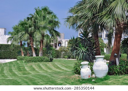 Landscape Design. Clay pots stand on a lawn on a background of palm trees