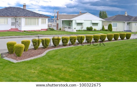 Landscape design. Nicely trimmed bushes at the front yard. Empty street and great quiet neighborhood.  North America.