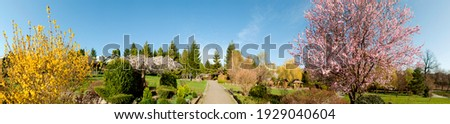 Landscape design of luxury home garden. Picturesque view of the landscaped garden in the yard. Landscape design with plants and flowers in a private area. Natural space scenery space in summer Stock photo ©