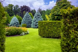 landscape desing of a park with a garden bed and trees with leaves and pine needles on a green lawn, evergreen and seasonal plants in the backyard.