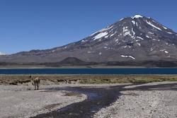 Landscape Diamond lagoon, Mendoza, Argentina