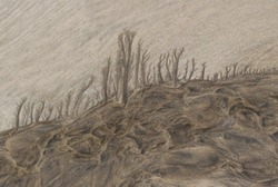 landscape - drawing in the sand at low tide