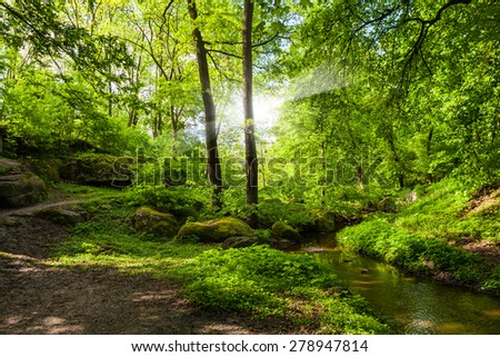 landscape forest and river with big stones on the shore #278947814