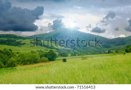Landscape from meadow with yellow flowers and deep blue sky