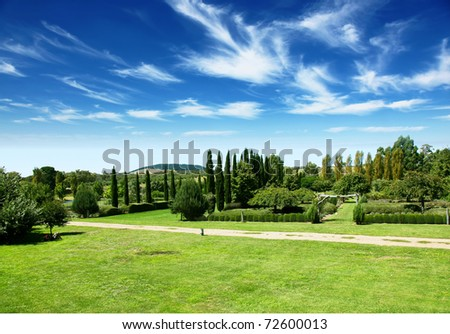 Landscape from park