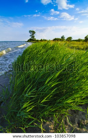 landscape from usedom island in germany