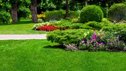 landscape garden flowerbed with plants in a leisure backyard with flowers and  trees on sunny summer day nobody.
