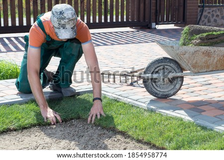 Landscape Gardener Laying Turf For New Lawn Photo stock ©