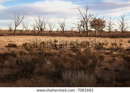 landscape image of a hard ry land in the drought