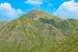 Landscape image of brown mountains with green trees on fort munro road dera ghazi khan,south Punjab, Pakistan.