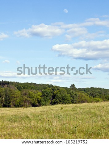 Landscape image of sky, clouds, trees and lush meadow.  Moon can also be seen in the sky.