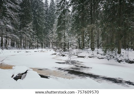 Landscape image of the lush forested outback, lake, river #757609570