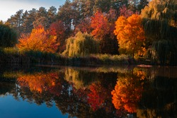 Landscape in autumn shore of the lake, trees, red leaves. Trees are reflected in the water.