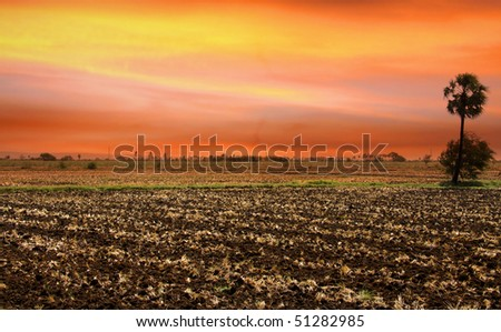 Landscape in India - stock photo