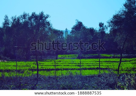 landscape in rif region other morocco Stockfoto ©
