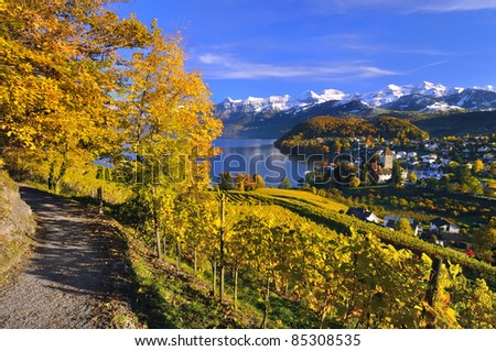 Landscape in Switzerland with the Swiss Alps