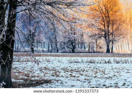 landscape in the countryside in the countryside with frost