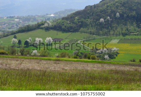 landscape in the spring #1075755002