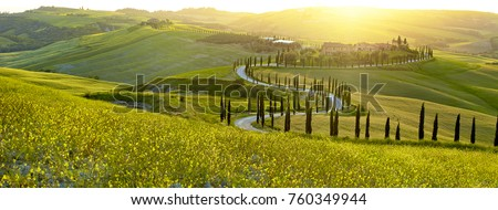 landscape in tuscany  italy