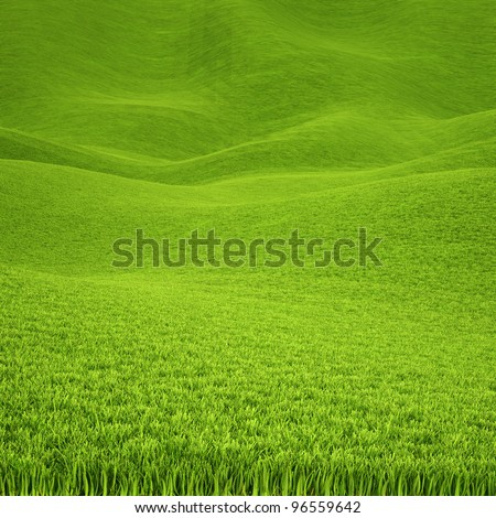 landscape is covered with green grass.