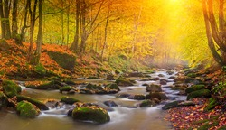 Landscape mountain river in autumn forest at sunlight. Fast jet of water at slow shutter speeds give a beautiful magic effect.