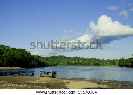 landscape of a river basin in the jungle