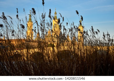 landscape of a sunrise on catholic basilica pilar in Zaragoza besides the Ebro river with some trees and plants at first site. The bridge over the Ebro river is called the stone bridge. Horizontal pic