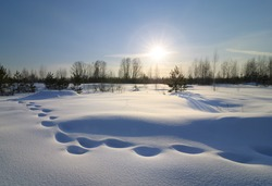 Landscape of a winter evening at sunset. Footprints in the snow.
