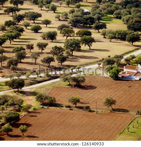 Landscape of agriculture fields of crops, olive oils in Alentejo region, Evora, Portugal