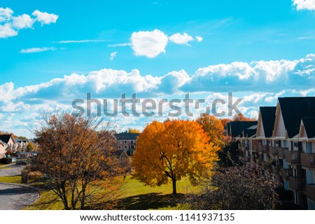 Landscape of an apartment complex in Grand Rapids Michigan during the fall