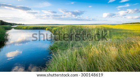 Landscape of green marshes and canals with beautiful reflections of clouds in blue water, and fields of yellow rapeseed in the background. Location: Swedish island of  Gotland in the Baltic Sea. #300148619