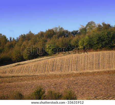 Landscape of hills and fields, with trees